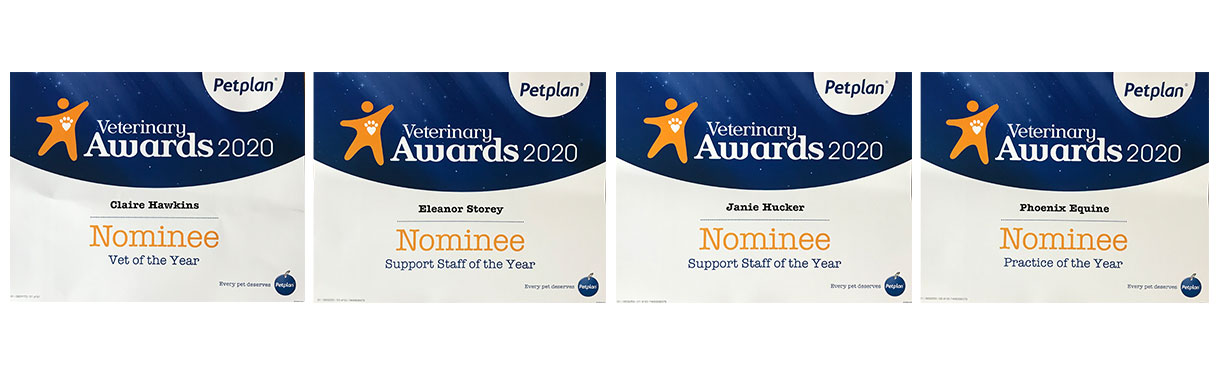 Petplan veterinary awards nominees